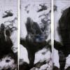 11_2004_Bahrami_DANA_detail
